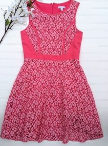 New York & Co Woven Pink Lace Fit & Flare Dress